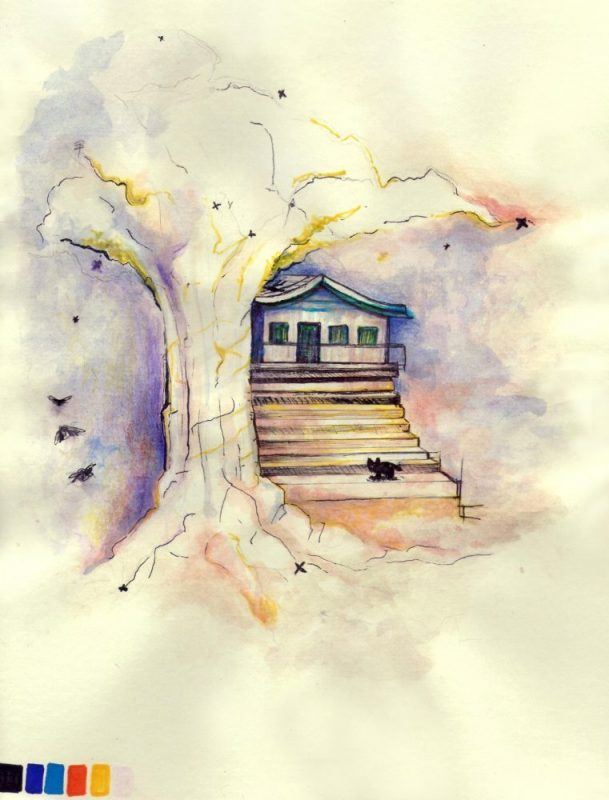 Tree home cat